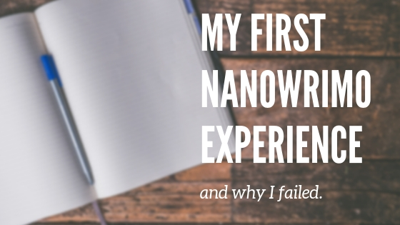 nanowrimo writing experience