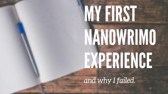 nanowrimo writing experience